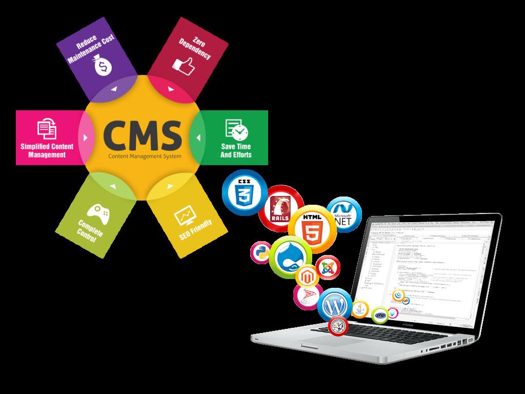 CMS web design