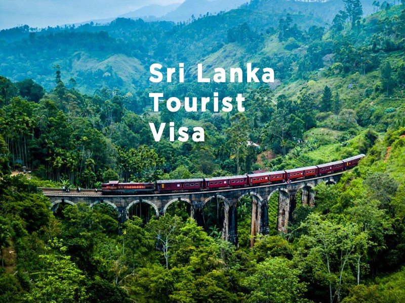 Visitor Location Of Sri Lanka